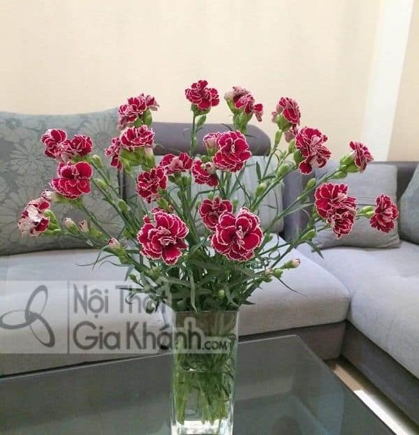 10 mẫu hoa để bàn phòng khách là Hot trend 2019 - 10 mau hoa de ban phong khach la hot trend 2019 8