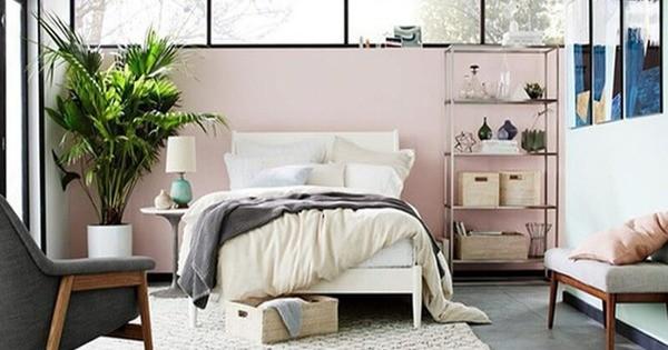 Đưa cây xanh vào không gian phòng ngủ có giường cận sàn