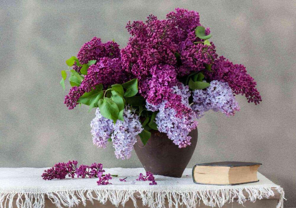 Hướng dẫn cách chọn và cắm bình hoa đẹp phù hợp với từng loại hoa