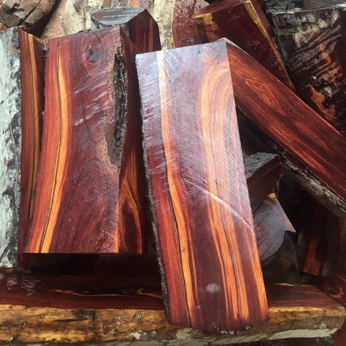 Kết quả hình ảnh cho gỗ trắc